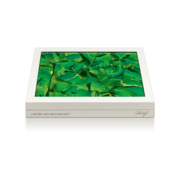 Davidoff Limited Edition Art 2017, Box of 10