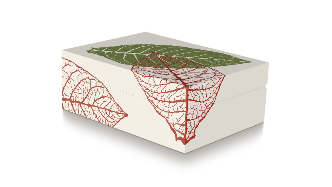 zino-graphic-leaf-humidor-white.jpg