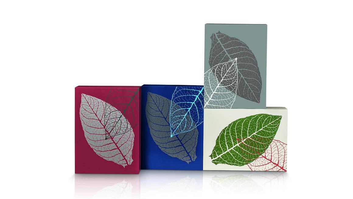 zino-graphic-leaf-humidor.jpg